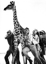 Hatari movie 1962 5x7 inch photo John Wayne Hardy Kruger holding giraffe on rope
