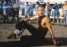 Paul Newman barechested boxing scene Cool Hand Luke 5x7 inch real press photo