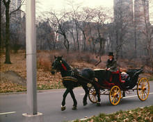 Barefoot In The Park Robert Redford Jane Fonda Horse Carriage 8X10 Photo Print