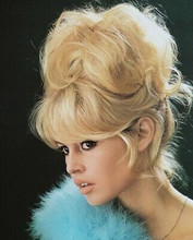Brigitte Bardot Beautiful Profile 8x10 Photo