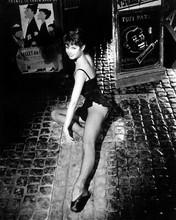 Brigitte Bardot Leggy Stockings 8x10 Photo