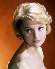 Carol Lynley early 1960's studio glamour portrait 8x10 photo