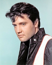 Elvis Presley 1966 portrait in racing jacket from Spinout 8x10 photo