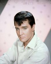 Elvis Presley stunning publicity portrait wearing white shirt 8x10 photo