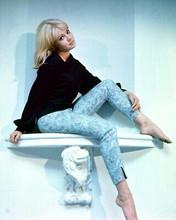 Hayley Mills 1960's Lovely 8x10 Photo