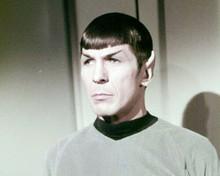 Leonard Nimoy as Mr Spock in Enterprise shirt Star Trek 8x10 photo
