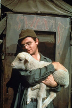 M.A.S.H Gary Burghoff as Radar carrying lamb by Swamp tent 8x10 photo