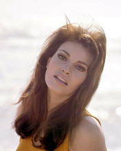 Raquel Welch beautiful 1967 portrait in orange sleeveless top 8x10 photo
