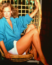 Shelley Hack leggy pin-up pose Charlie's Angels 8x10 photo
