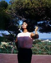 Sophia Loren poses for cameras on balcony early 1960's 8x10 photo