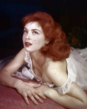 Tina Louise busty portrait in falling off shoulders nightdress 8x10 photo
