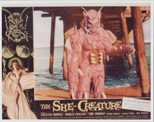 The She-Creature Marla English Chester Morris 8x10 photo