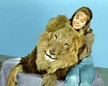 Daktari TV series Cheryl Miller & Clarence the cross-eyed Lion 8x10 inch photo