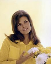 Raquel Welch in yellow blouse smiling studio portrait circa 1967 8x10 inch photo