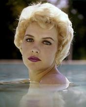 Stella Stevens beautiful portrait bare-shoulder swimming in pool 8x10 inch photo