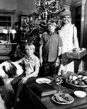 The Doris Day Show Doris Philip Brown Todd Starke by Christmas tree 8x10 photo