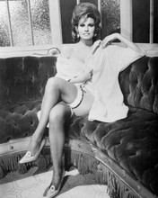 Raquel Welch leggy pose with garter belt seated The Oldest Profession 8x10 photo