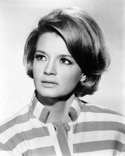 Angie Dickinson studio portrait in striped top Chris in Point Blank 8x10 photo