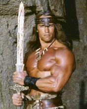 Arnold Schwarzenegger holding sword to chest Conan the Destroyer 8x10 inch photo