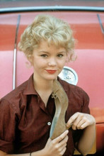 Tuesday Weld cute pose in brown shirt early 1960's 4x6 inch photo