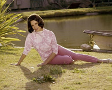 Diane Baker 1960's publicity portrait in pink sitting on lawn 8x10 inch photo