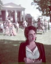 Elizabeth Taylor relaxes between scenes on Raintree County movie set 8x10 photo