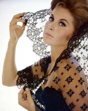 Stefanie Powers in low cut black dress glamour portrait 1960's 8x10 inch photo