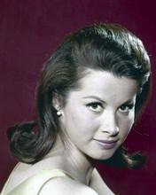 Stefanie Powers beautiful 1960's young studio portrait 8x10 inch photo