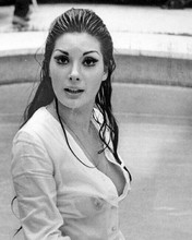 Edwige Fenech looks gorgeous in white shirt in swimming pool 8x10 inch photo