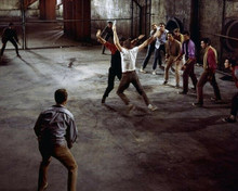 West Side Story George Chakiris Russ Tamblyn Richard Beymer 8x10 inch photo
