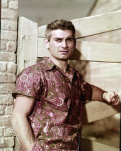 Jeff Chandler poses by fence in Hawaiian shirt 8x10 inch photo