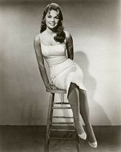 Dyan Cannon sits on stool in clinging summer dress young pose 8x10 inch photo