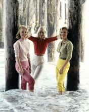 Mai Britt poses with Inger Stevens Ingrid Goude 1960's Malibu beach 8x10 inch photo
