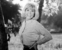 Doris Day smiling outdoor pose in checkered shirt Doris Day Show 8x10 inch photo