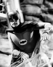 Adam West in action in Batsuit as TV's Batman 8x10 inch photo