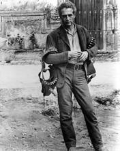Paul Newman carries 2 gunbelts full length as Butch Cassidy 8x10 inch photo