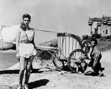 Hercules 1958 Steve Reeves kneels at chariot Sylva Koscina standing 8x10 photo