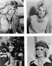 Police Woman 1974 season one Angie Dickinson in four undercover looks 8x10 photo