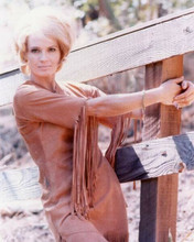 Angie Dickinson poses on fence 1971 Pretty Maids All in A Row 8x10 inch photo