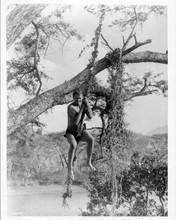 Jock Mahoney as Tarzan swinging on vine in jungle 8x10 inch original photo