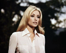 Sharon Tate in white blouse Valley of the Dolls 1967 8x10 inch photo