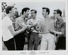 Summer Holiday original 1963 8x10 photo Cliff Richards and The Shadows
