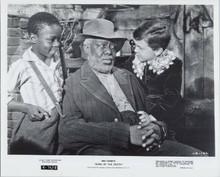 Song Of The South original 1972 8x10 photo James Baskett Bobby Driscoll