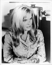 Shirley Eaton original 8x10 inch photo circa 1967 movie unknown