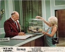 Not Now Darling original 8x10 British lobby card Barbara Windsor Bill Fraser