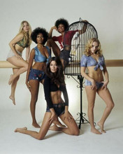 The Big Bird Cage 1972 Pam Grier Candice Roman Anitra Ford 8x10 inch photo