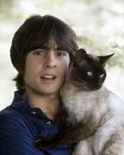 Davy Jones The Monkees star poses with his cat 1960's 8x10 inch photo