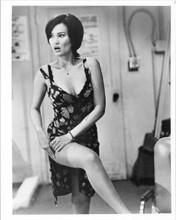 Tia Carrera shows her leg 8x10 inch vintage photo