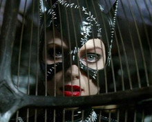 Michelle Pfeiffer pictured behind bars as Catwoman 8x10 inch photo