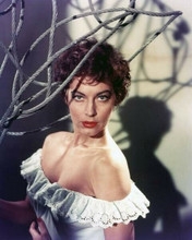 Ava Gardner sensual portrait white top pulled down over shoulders 8x10 photo